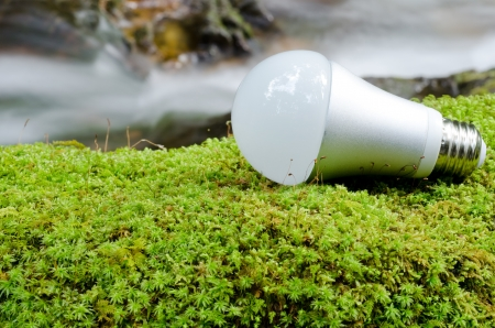 fluorescent: LED light bulb on the green moss near the brook Stock Photo
