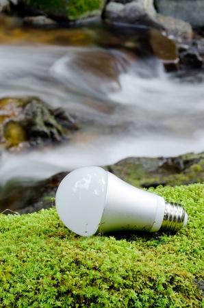 LED Glühbirne auf dem grünen Moos in der Nähe des Baches in vertikaler Position