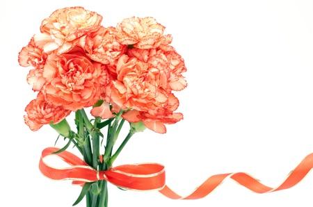 白い背景の上のリボンと結ばれるオレンジ カーネーションの花束を立って