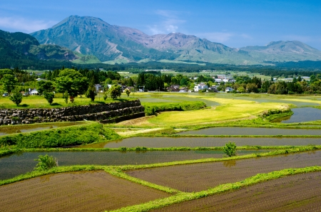 Just after the rice planting paddy field with wheat field in front of mountains from Aso Kumamoto, Japan Stock Photo - 14510259