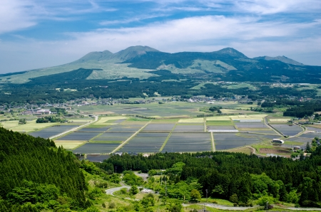 Cultivation area with coniferous forest in front of mountains from Aso Kumamoto, Japan Stock Photo - 14502826