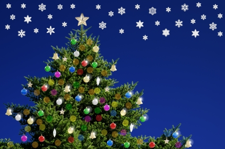 Christmas tree and snow crystals in front of blue photo