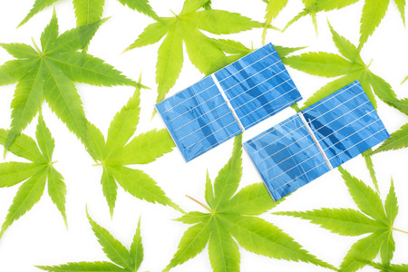 Green maple leaves and solar cells on white background photo
