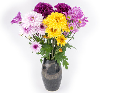 Colorful chrysanthemum flowers were placed in a vase photo