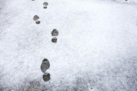 雪の薄層の上の足跡
