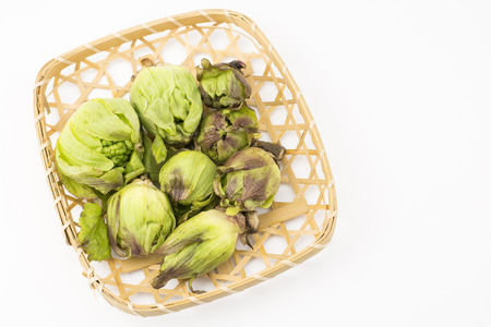 butterbur: Several harvested green butterbur sprouts in the bamboo sieve on a white background