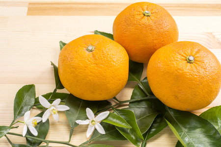Bitter summer orange fruit and flowers on a wood table
