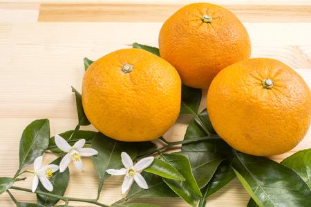 albero da frutto: Arancio amaro frutta estiva e fiori su un tavolo di legno