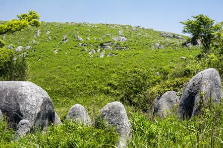 topografia: verde colina con karst bajo el cielo azul