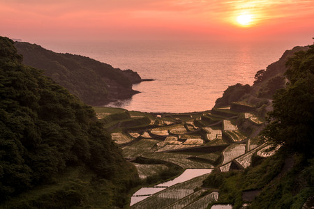 saga: Sinking sun and seashore terraced rice fields in Genkai, Saga