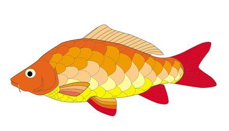 colorful carp Stock Photo - 6077198
