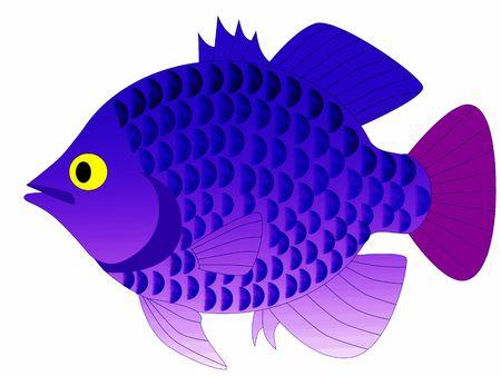 colorful fish Stock Photo - 6095622