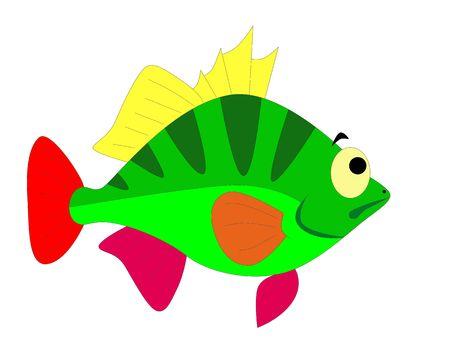colorful fish Stock Photo - 6241875