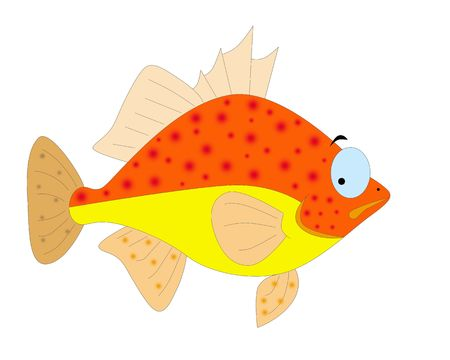 colorful fish Stock Photo - 6241876