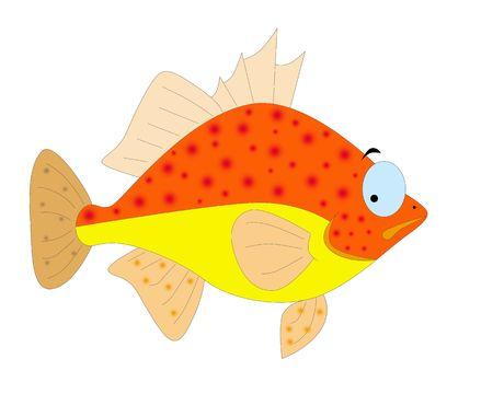colorful fish Stock Photo - 6241876