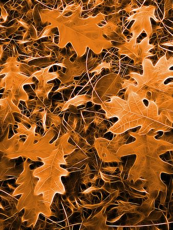 l dynamic: abstract autumn background Stock Photo