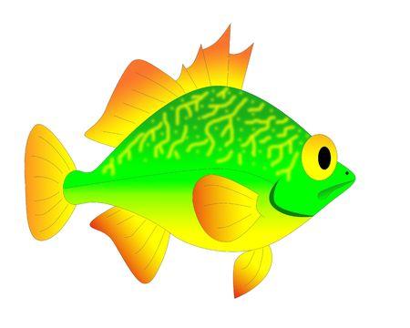 toy fish photo