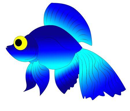 blue toy fish photo