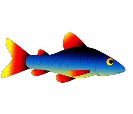 fish toy: pesce del giocattolo