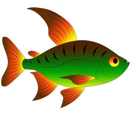 beautiful toy fish photo
