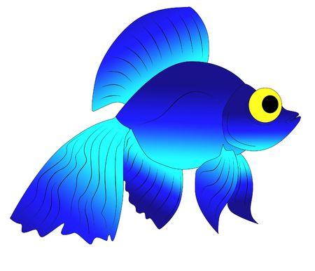 blue fish Stock Photo - 6980579