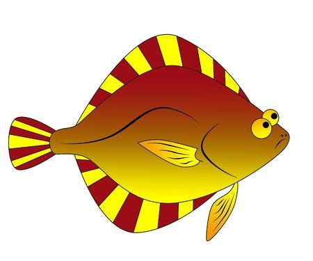 flounder photo