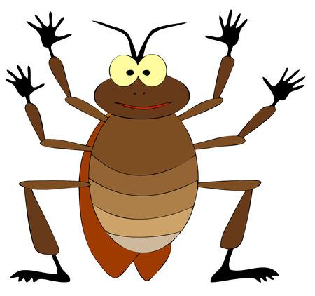 escarabajo: cucaracha  Vectores