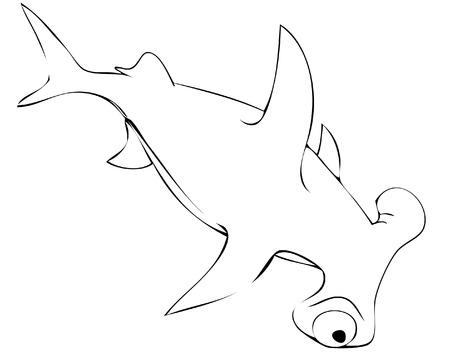 flounder: shark