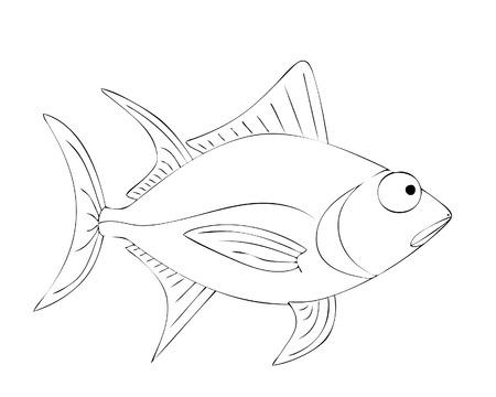fluke: tuna
