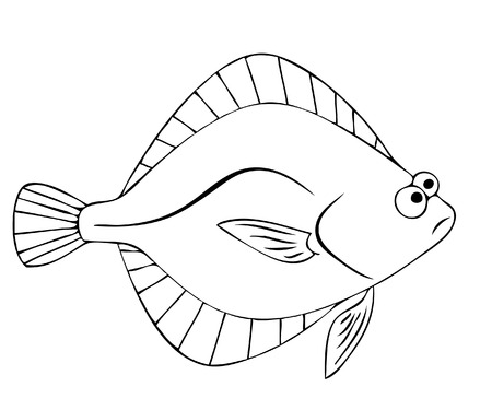 flounder Illustration