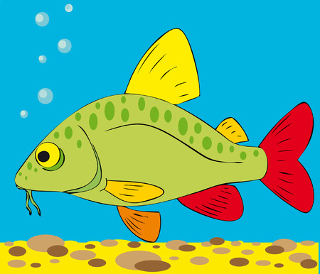 minnow Vector