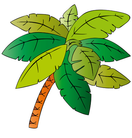 palm Stock Vector - 7304855