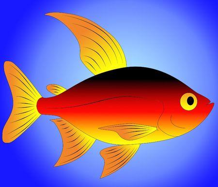 fish toy: pesce del giocattolo  Archivio Fotografico