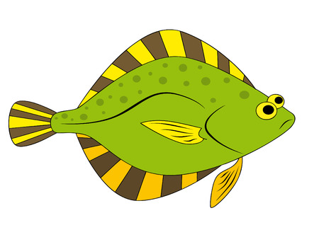 plaice: flounder Illustration