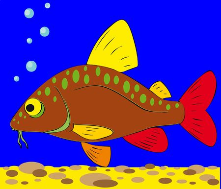 colorful fish Stock Photo - 7477401