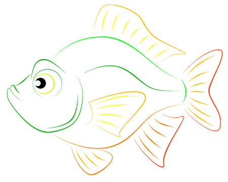 fluke: colorful fish