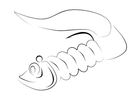 fluke: silicone fishing lure Illustration