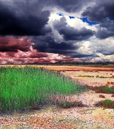 wilds: colorful fantasy desert