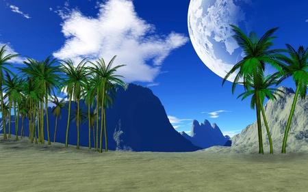 colorful tropical landscape photo