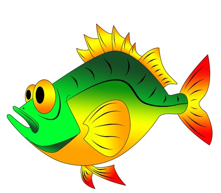 colorful funny fish photo