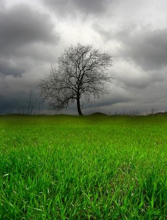 abandonment: Dark landscape Stock Photo