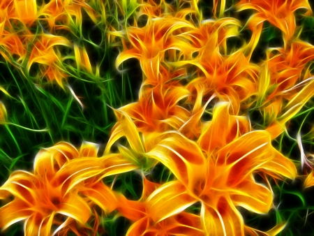 meshwork: Abstract flowers