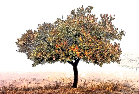 pictorial art: tree