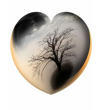psyche: Resumen corazón