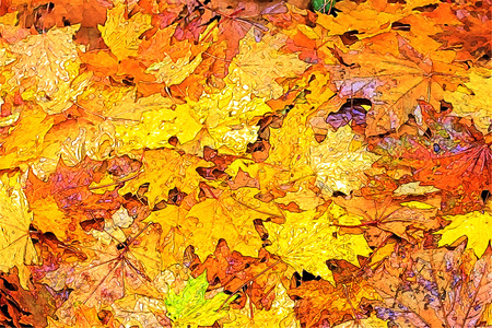 bark: autumn background Stock Photo