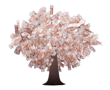tree with rubles isolated photo