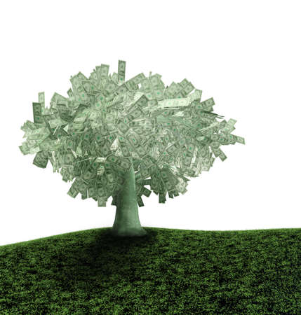 bacground: dollars tree at white bacground  Stock Photo
