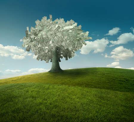 arbre de dollars