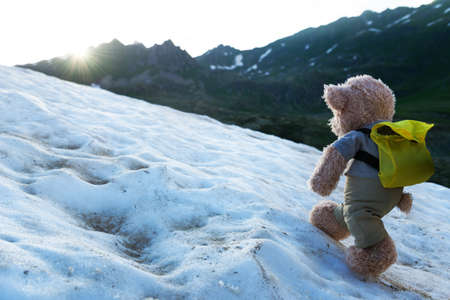 teddy bear hiking in mountains