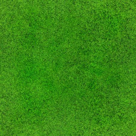 牧歌的なシームレスな草のテクスチャ